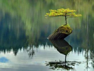 mindfulness-4